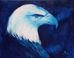 Weißkopfadler, Acryl 30x40cm