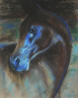 Pferdeportrait Pastell A3
