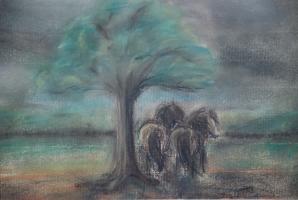 Shetty im Sturm Pastell 32x24 cm